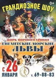 """Цирковое шоу """"Гигантские морские львы"""" в Хабаровске 26 января 2019"""