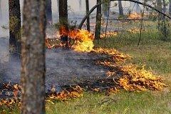 В Хабаровске создадут специальное подразделение по тушению крупных лесных пожаров