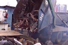 Тонны осетрины, незаконно добытой в Хабаровском крае, развозили по Москве в мусоровозе (видео)
