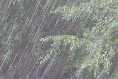 Сильный дождь обрушится на Хабаровск