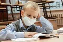 Два класса в хабаровских школах из-за массового заболевания ОРВИ закрыты на карантин