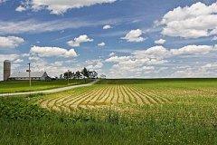 На инфраструктуру к «дальневосточным гектарам» выделили 50 млн рублей
