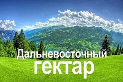 Около 9 тысяч «дальневосточных гектаров» оформлено в Хабаровском крае