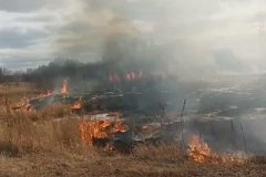 Сухая трава на большой площади горит прямо сейчас под Хабаровском (видео)