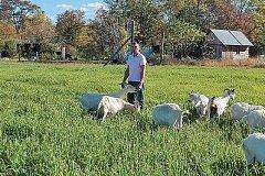 Фермер выиграл многомиллионный грант на развитие козоводства в Хабаровском крае
