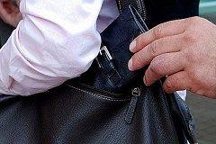 В Хабаровске поймали матерого карманника с поличным