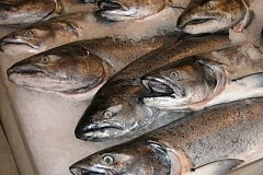 Красная рыба подорожала почти вдвое в Хабаровске