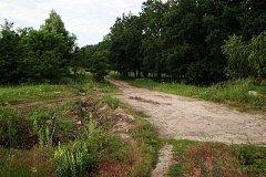 Два трупа за неделю нашли в лесополосе близ Комсомольска