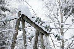 В Хабаровском крае жители посёлков остались на долго без света