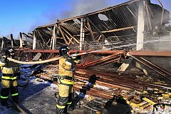 Заброшенная птицефабрика сгорела в Хабаровске (фото)