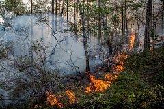 Крупные природные пожары тушат в Хабаровском крае