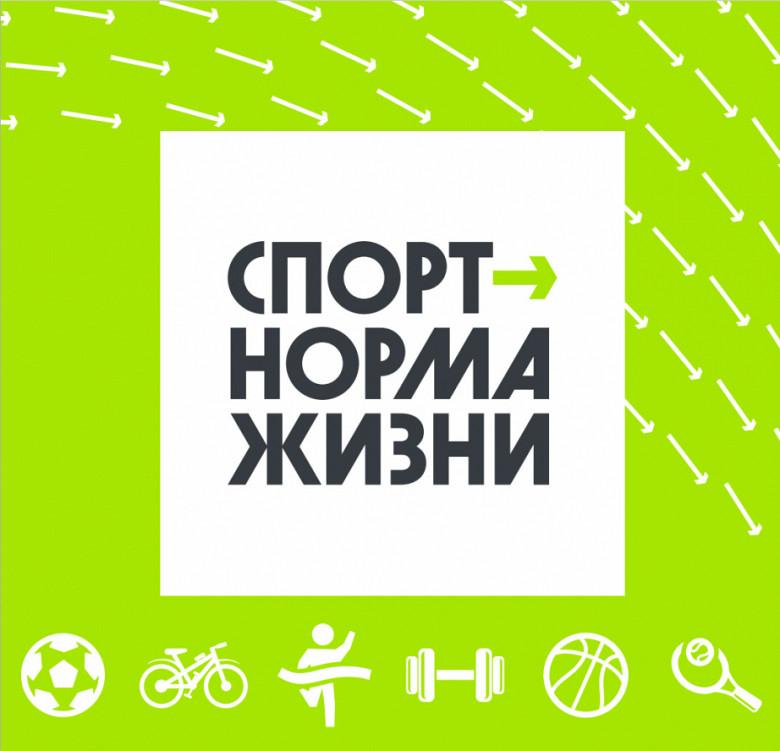 На модернизацию спортивной инфраструктуры в этом году потратят более 1,5 млрд рублей фото 2