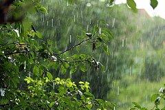 Дождливая погода задержится в Хабаровском крае