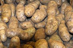 В Хабаровском крае удалось нормализовать цены на картофель