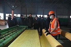 Дегтярев: Мы готовы поддерживать добросовестные лесоперерабатывающие предприятия