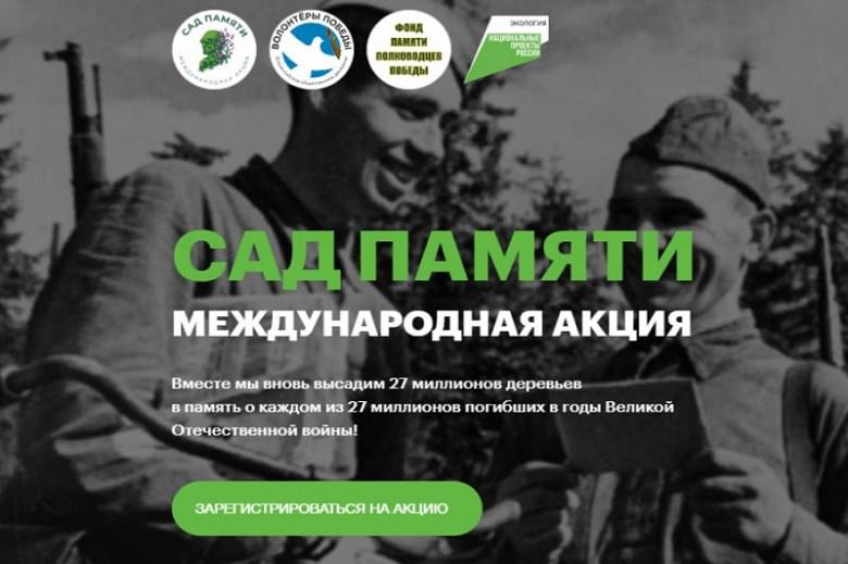 Более 3,5 тысячи сеянцев кедра высадят в окрестностях села Некрасовка на этой неделе фото 2