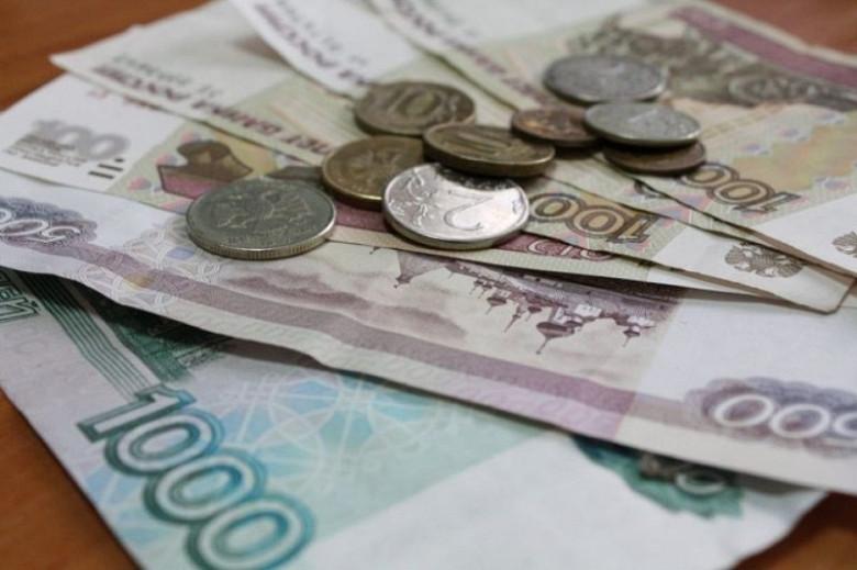 Депутаты Законодательной Думы Хабаровского края одобрили предложенные поправки в бюджет фото 2